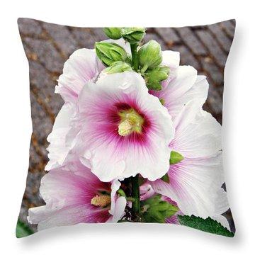 Hollyhocks In Schierstein 7 Throw Pillow