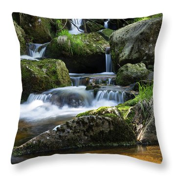 Holtemme, Harz Throw Pillow