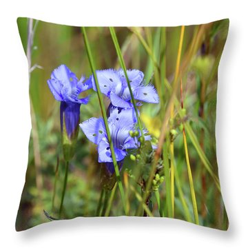 Throw Pillow featuring the photograph Holy Blue Gentian by Sally Sperry