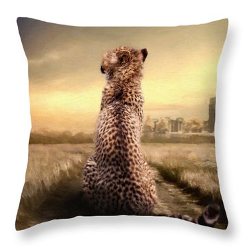 Throw Pillow featuring the photograph Home by Christine Sponchia