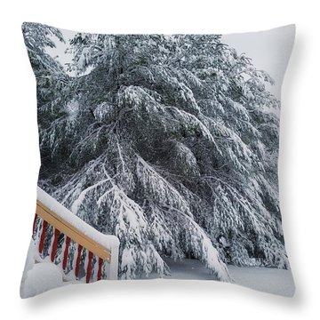 Home For The Blizzard Throw Pillow