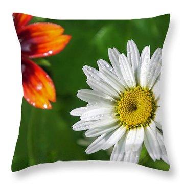 Home Furnishings Throw Pillow