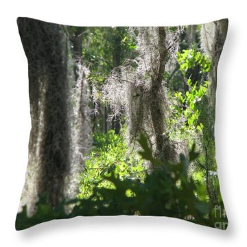 Throw Pillow featuring the photograph Home by Greg Patzer