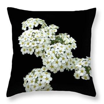 Home Grown White Flowers  Throw Pillow