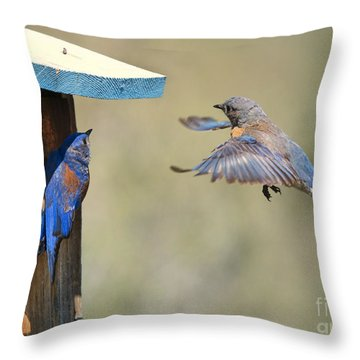 Home Inspection Throw Pillow