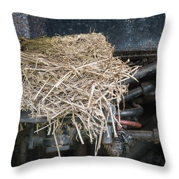 Home Is Where You Build Your Nest Throw Pillow