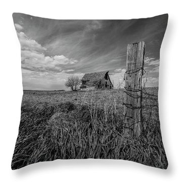 Throw Pillow featuring the photograph Home On The Range  by Aaron J Groen