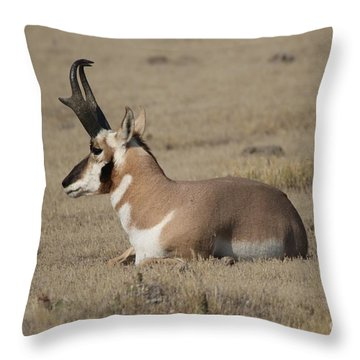 Throw Pillow featuring the photograph Home On The Range by Robert Pearson