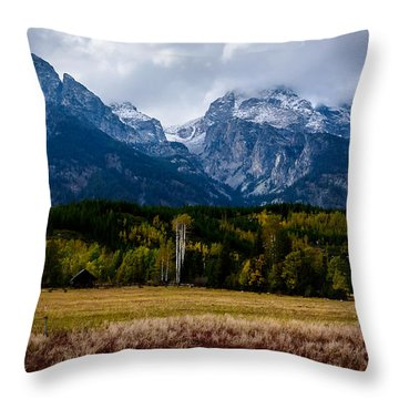 Throw Pillow featuring the photograph Home Sweet Home by Sandy Molinaro