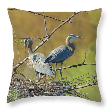 Home Town Blues Throw Pillow by Kelly Marquardt