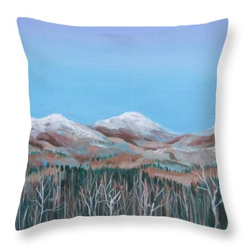 Home View Throw Pillow
