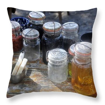 Homemade Throw Pillow by David Lee Thompson