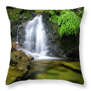 Homesite Falls Autumn Serenity Throw Pillow
