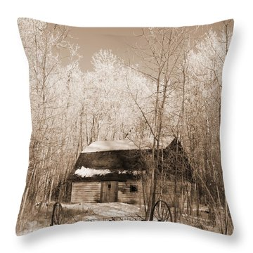 Throw Pillow featuring the photograph Homestead by Pat Purdy