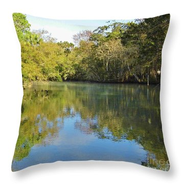 Homosassa River Throw Pillow