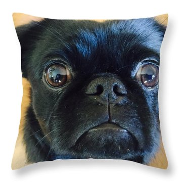 Honestly Throw Pillow