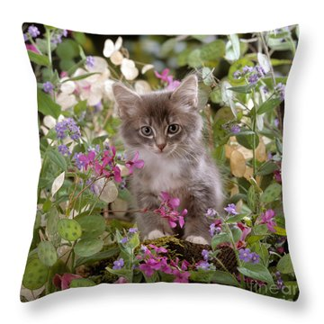 Honesty Is My Name Throw Pillow