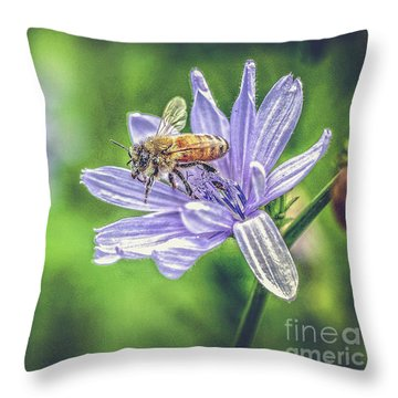 Honey Bee And Flower Throw Pillow
