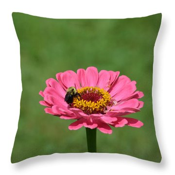 Honey Bee At Work Throw Pillow by Linda Geiger
