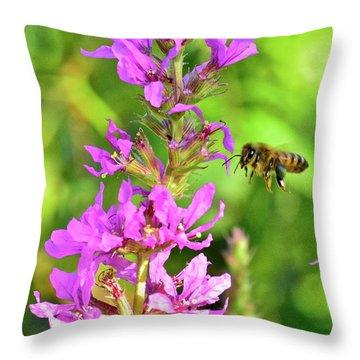 Honey Bee In Flight Throw Pillow