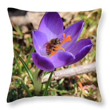 Throw Pillow featuring the photograph Honey Bee On Crocus  by Rick Morgan