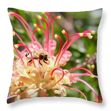 Honey Bee On Grevillea  Throw Pillow