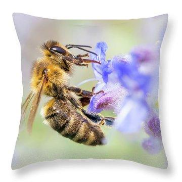 Honey Bee On Russian Sage Throw Pillow