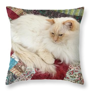 Honey My Helper Throw Pillow