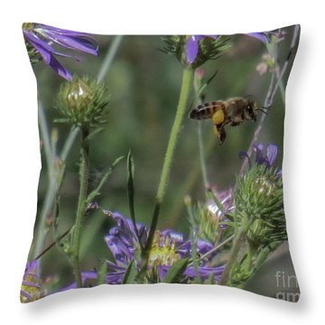 Honeybee 2 Throw Pillow
