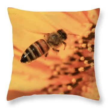Throw Pillow featuring the photograph Honeybee And Sunflower by Chris Berry