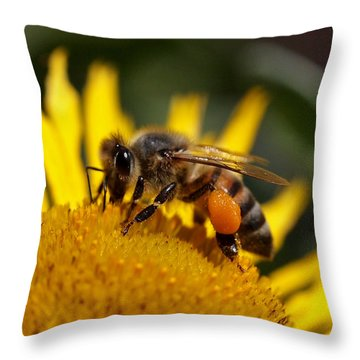 Honeybee At Work Throw Pillow by Rona Black