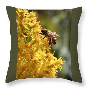 Honeybee On Showy Goldenrod Throw Pillow