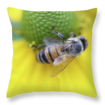 Honeybee On Yellow Throw Pillow