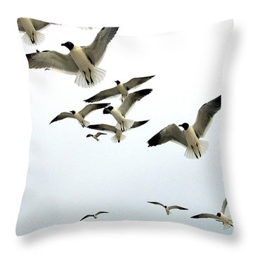 Honeymoon Island Sea Gulls Throw Pillow