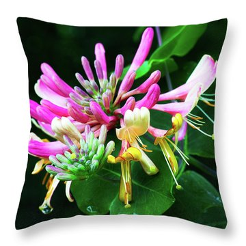Honeysuckle Bloom Throw Pillow