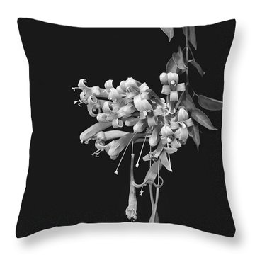 Honeysuckle Blossoms Throw Pillow