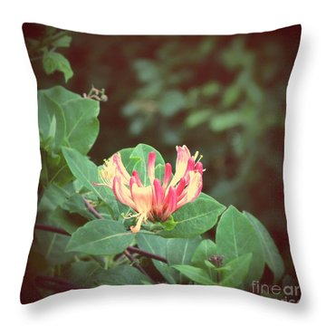 Honeysuckle Throw Pillow by Mini Arora
