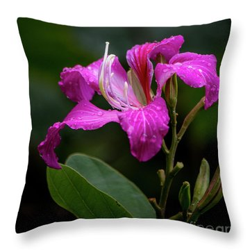 Hong Kong Orchid Throw Pillow