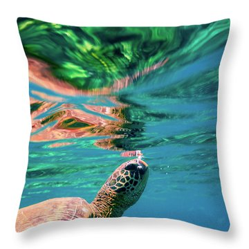 Hono Abstract Throw Pillow