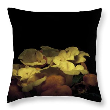 Throw Pillow featuring the photograph Honoring The Aurora by Karen Musick