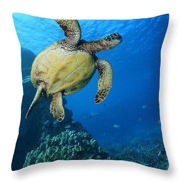Throw Pillow featuring the photograph Honu  by Aaron Whittemore