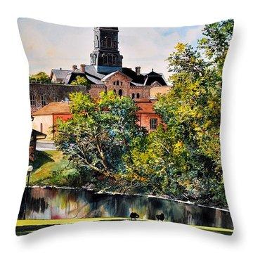 Hood County Summer Throw Pillow
