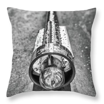 Hood Ornament Throw Pillow