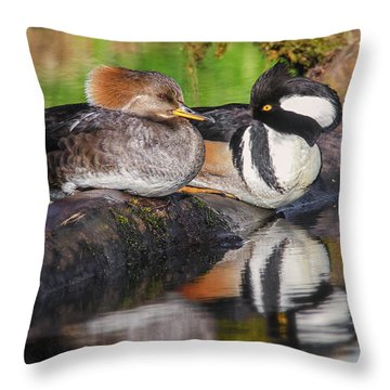 Hooded Merganser Pair Throw Pillow