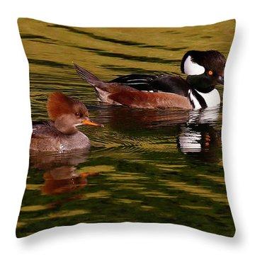 Hooded Merganser Couple Throw Pillow