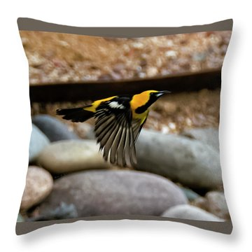 Throw Pillow featuring the photograph Hooded Oriole H37 by Mark Myhaver