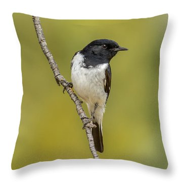 Hooded Robin Throw Pillow