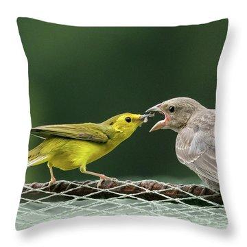 Hooded Warbler Feeding Cowbird Throw Pillow