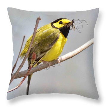 Hooded Warbler With Bug Throw Pillow by Alan Lenk