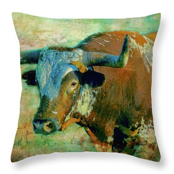 Hook 'em 1 Throw Pillow by Colleen Taylor